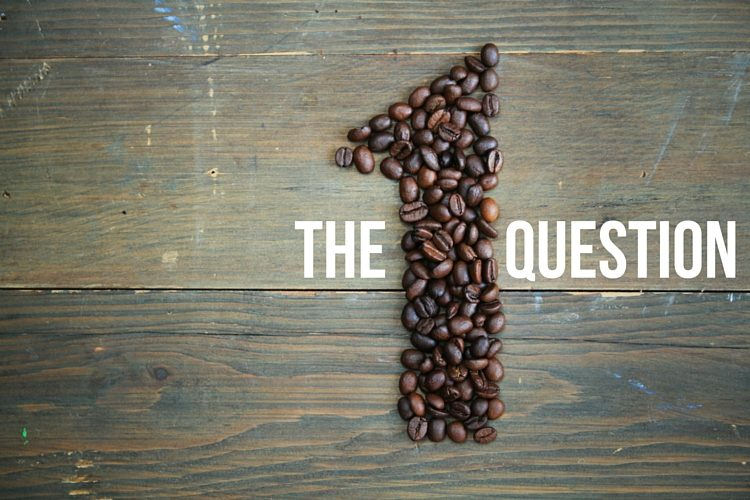 THE ONE QUESTION